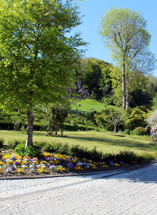 Parque arbolado - Domaine du Clos Fleuri